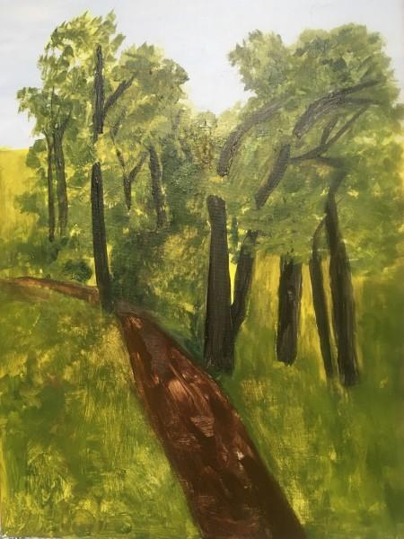 Woods Walk Spring 2018