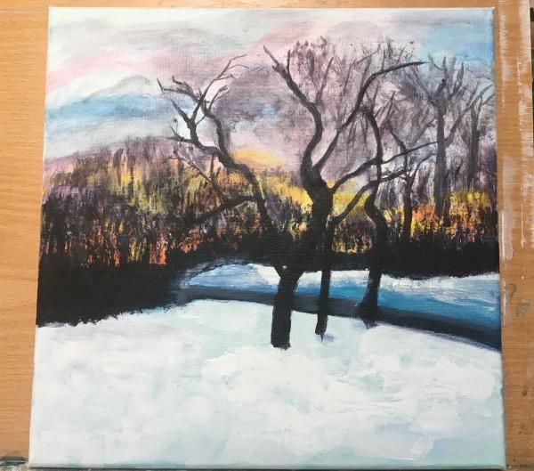 Sunset over Winter Trees