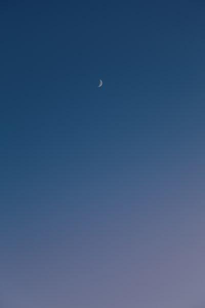 Moon #22