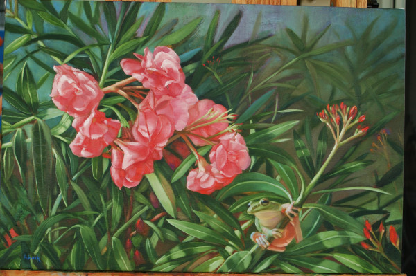 Oleander With a Tree Frog