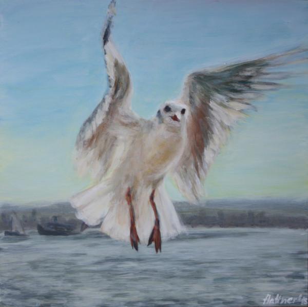 """Hamburg Seagull """"Möwing on"""""""