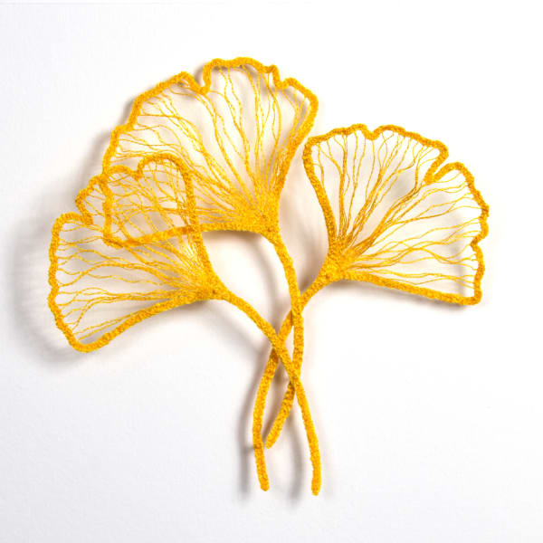 Little Ginkgo study 2