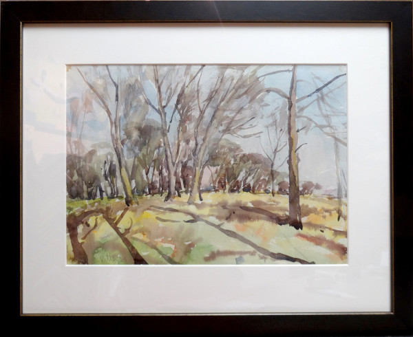 2392 - Untitled - Bare trees