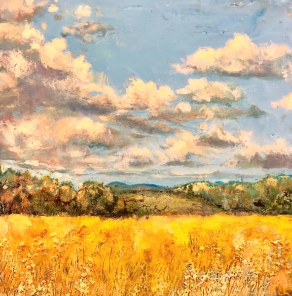 Hillsboro Vista
