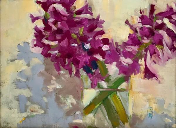 Early Hyacinths