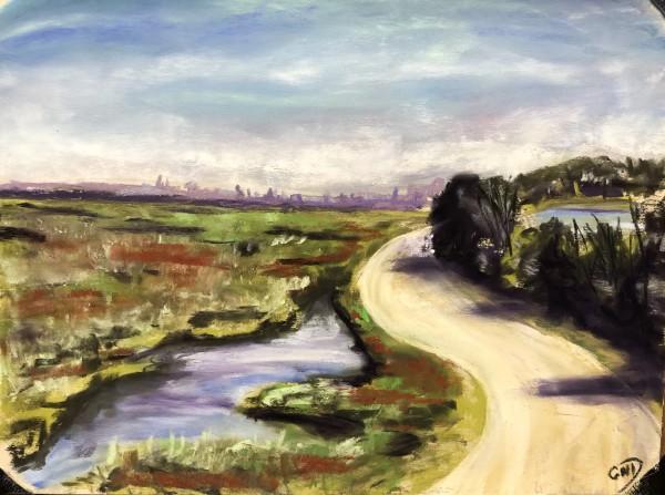 Saltmarsh Superhighway