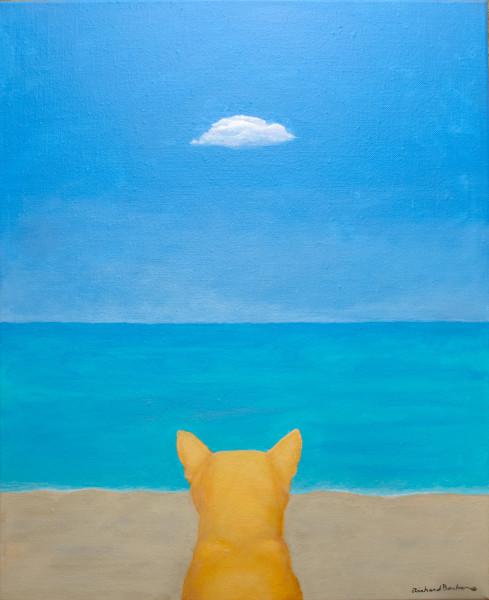 Cat Beach (when cats dream III)