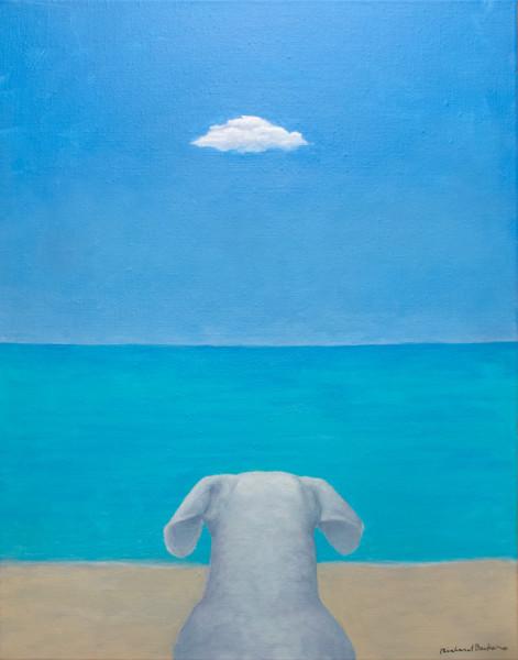 Dog Beach II