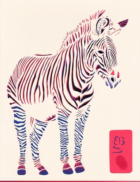 Greevy's Zebra