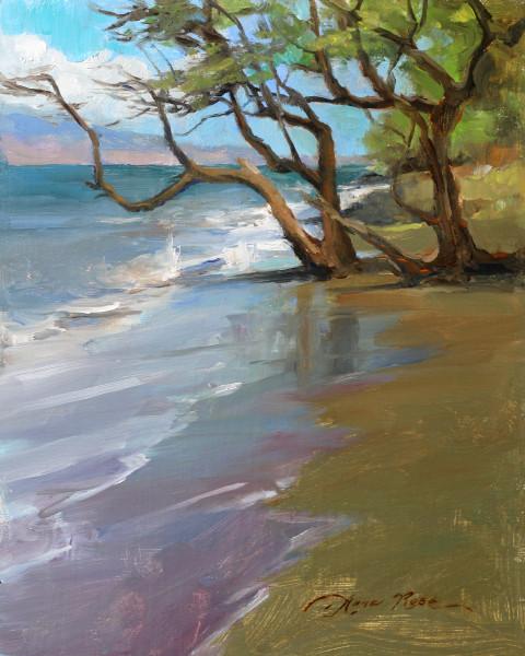 Wailuku Shoreline