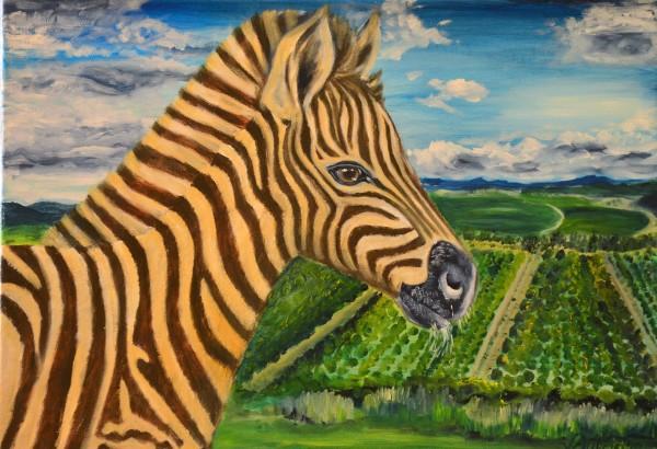Zebra Filly