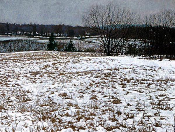 Field in Snow