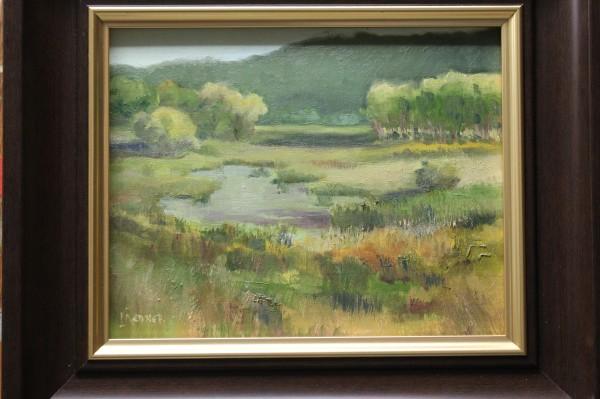 Early Autumn on the Marsh