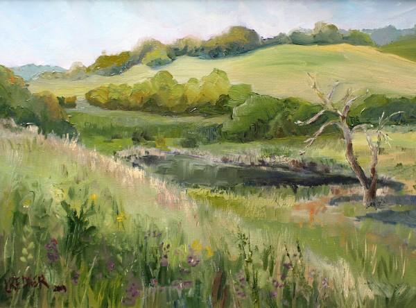 Wild Marsh Meets Tamed Farm Land