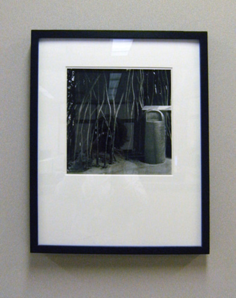 Untitled #13, from the Divide and Conquer Series 1999