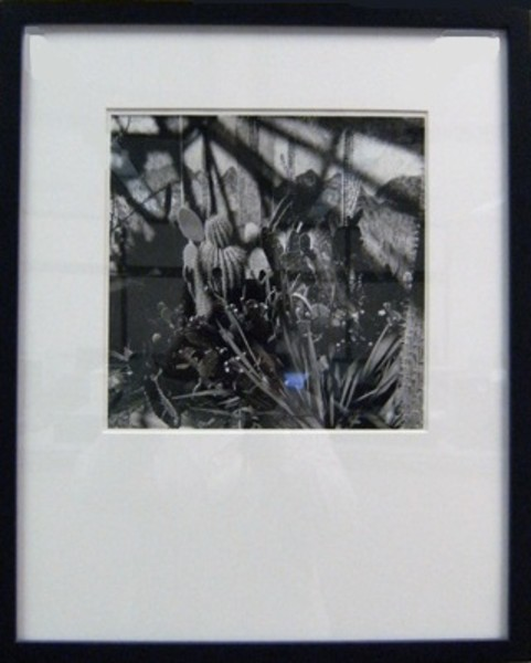 Untitled #35, from the Divide and Conquer Series, 1999