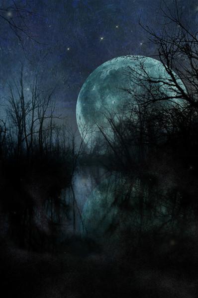 "3rd Place – Overall - Shelley Benjamin – ""Night View"" - https://artboja.com/art/w6ytal/"