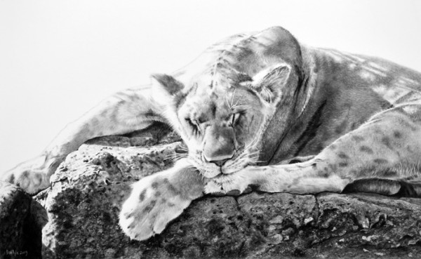"""4th Place – Overall - Dan Pyle - """"Cat Nap"""" – www.danpyleartist.com"""