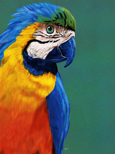 """5th Place – Overall - Kathy S. Copsey - """"A Beauty of Many Colors"""" – www.ksdesigns16.com"""