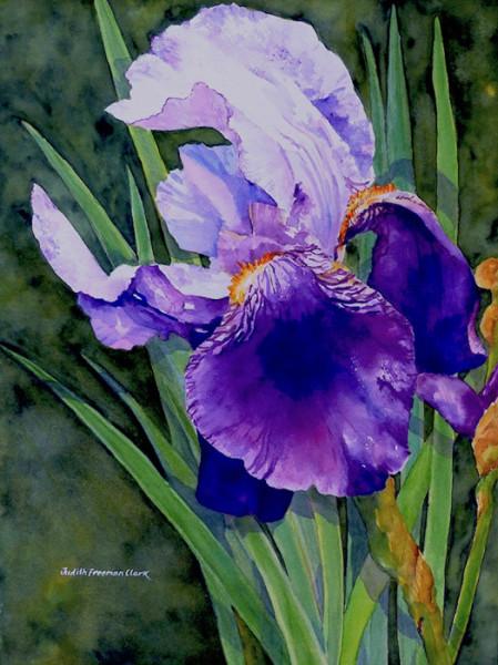 """6th Place – Overall - Judith Freeman Clark - """"Garden Royalty II"""" – www.judithfreemanclark.net"""