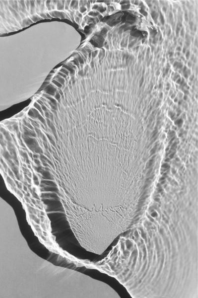 MicrocosmsDyptich1B