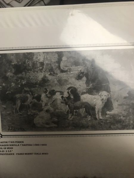 Pastor y sus perros
