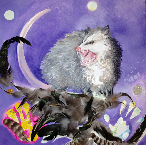 Night Opossum