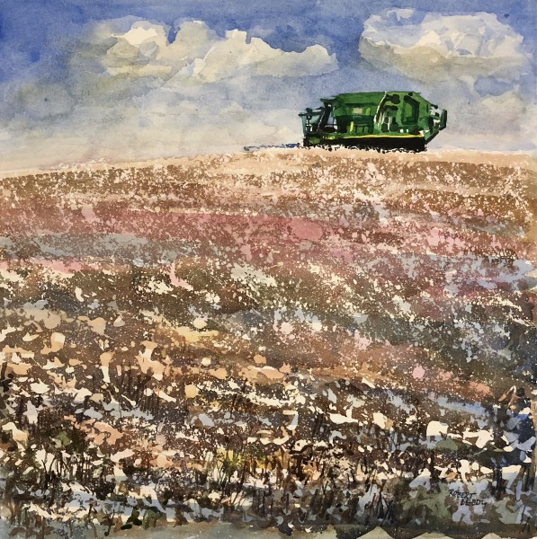 """Cotton Harvest, Boston, Georgia"""
