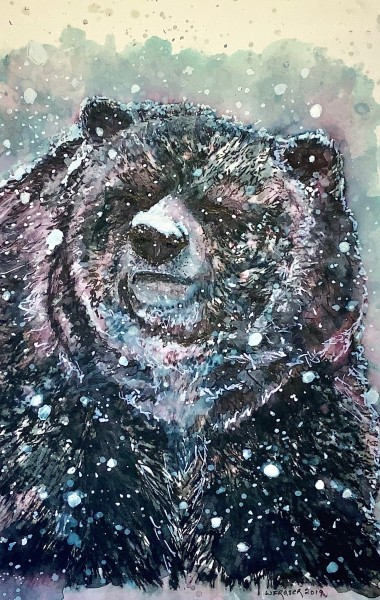 Snowy Day - Canadian Grizzly