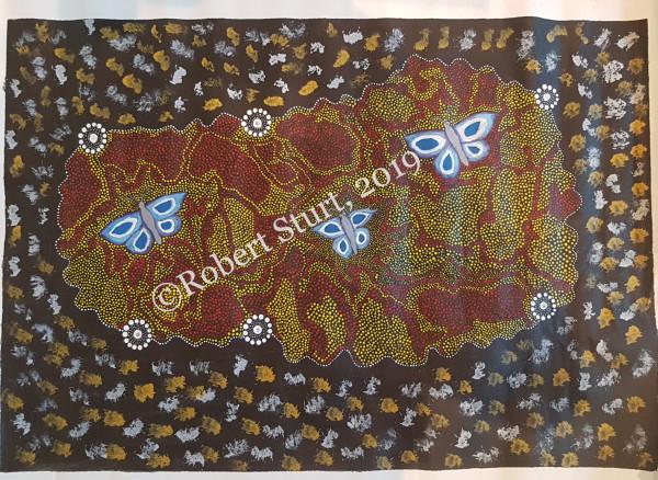 "RS 002 ""Grandmothers Dreaming with Butterflies"" ~ Robert Sturt"