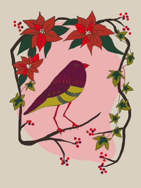 Poinsettia bird