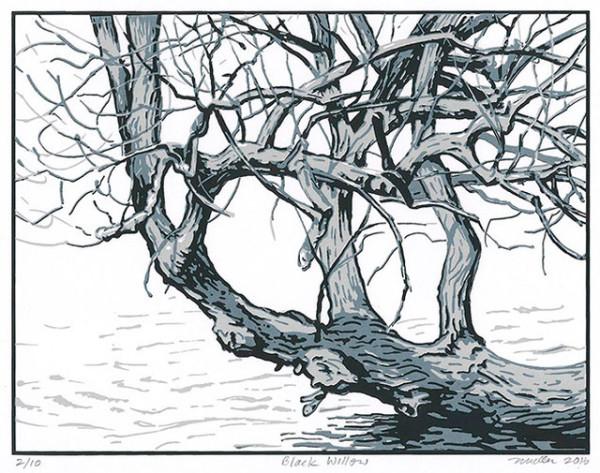 Black Willow (Framed Screen Print)
