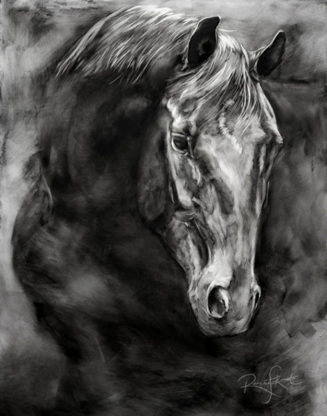 Sweet Entreaty ~Expressive dramatic black and white charcoal horse portrait of  Remi