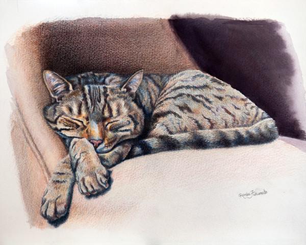 Sleepy Tabby Cat