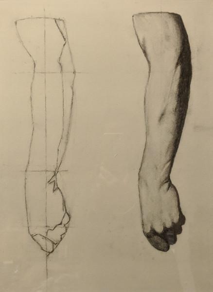 Bargue, Plate I, 18