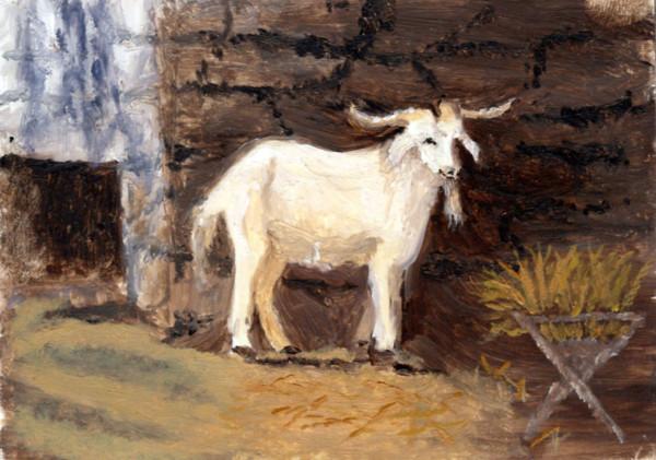 Caroline's Goat