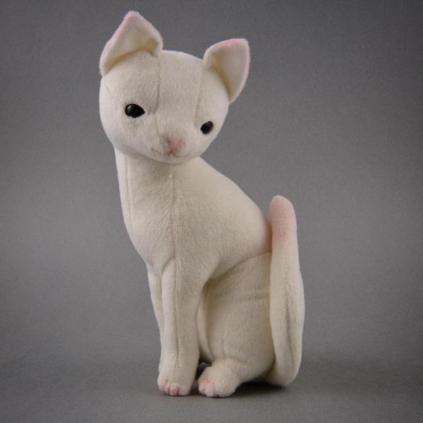 土屋仁應子貓 (Kitten) (5隻)