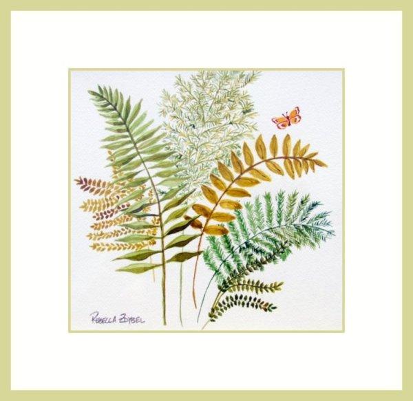 Ferns and Butterflies 1