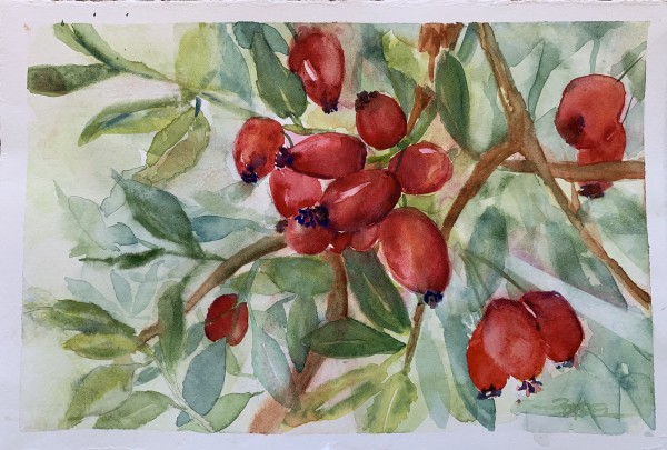 Berries and Branches