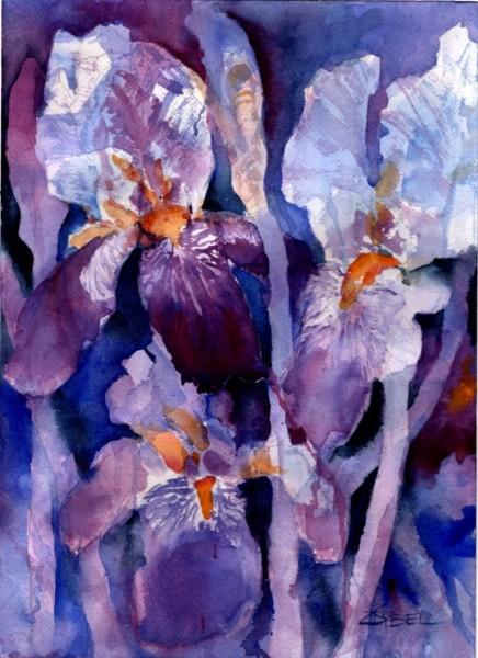 Imperial Iris