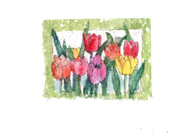 Tuesday's Tulips