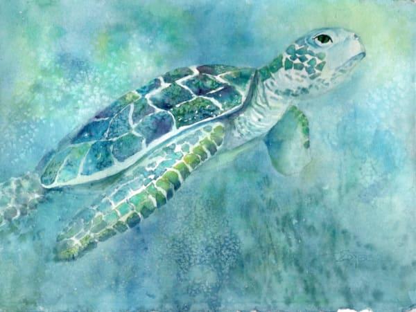Turtle Daze 3