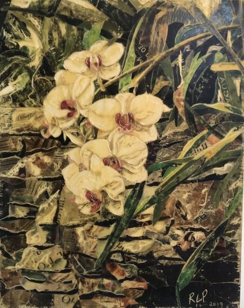 Orchids Commission