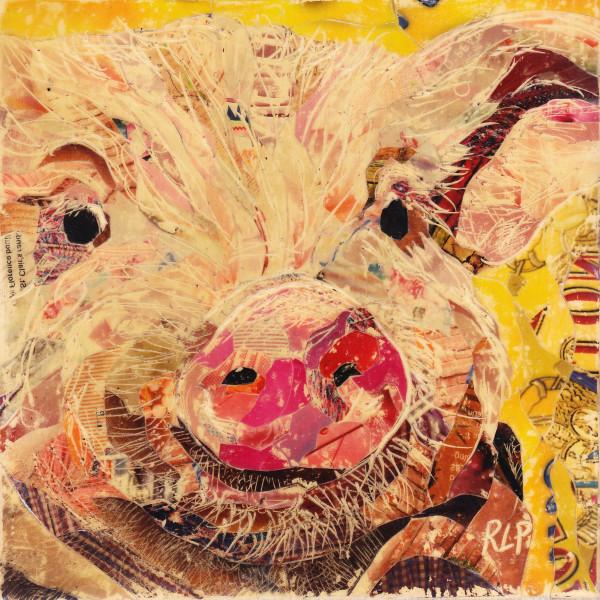 Pig Study #3