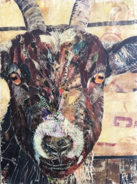 Millie (Goat #1)
