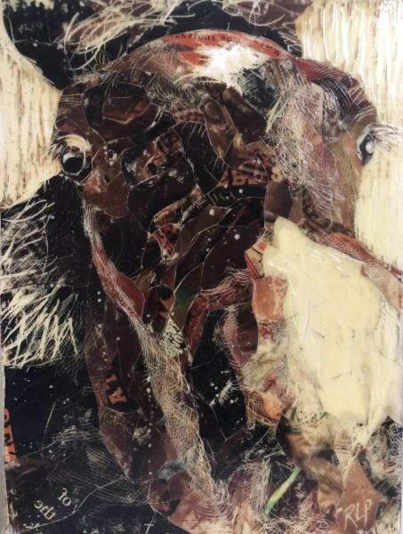 Horse study #1