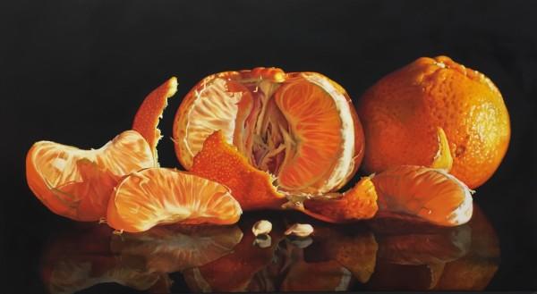 Sunset Citrus