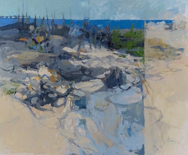 On a Rocky, Sandy Beach with Phinn