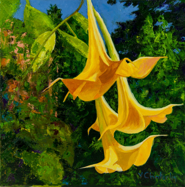 Dancing in the Sun (Trumpet Flowers)