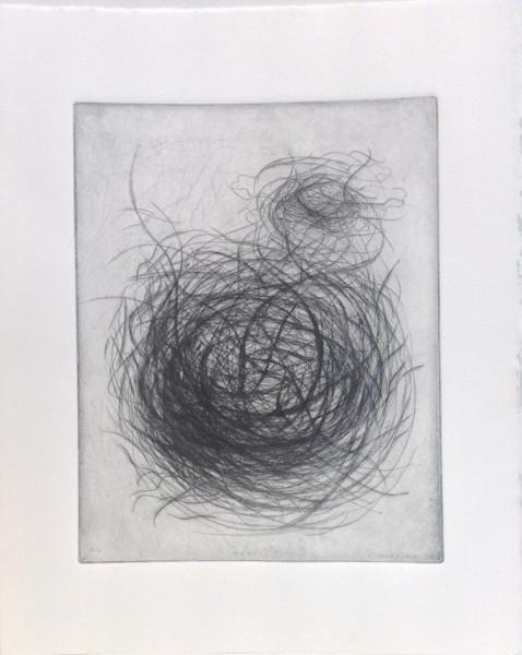 Nest (Linear)